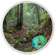 Alien In Redwood Forest Round Beach Towel