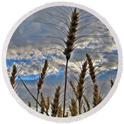 All About Wheat Round Beach Towel