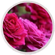 All The Fuchsia Pink Roses  Round Beach Towel