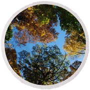 All The Trees Of The Forest Round Beach Towel