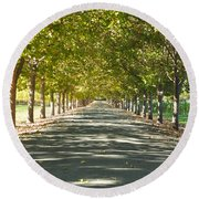 Alley Of Trees On A Summer Day Round Beach Towel