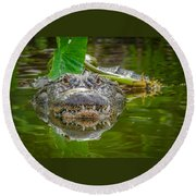 Alligator 2 Round Beach Towel