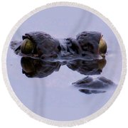 Alligator Eyes On The Foggy Lake Round Beach Towel