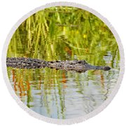 Alligator Reflection Round Beach Towel by Al Powell Photography USA