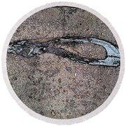 Alligator Skull Fossil 3 Round Beach Towel