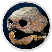 Alligator Snapping Turtle Round Beach Towel