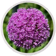 Allium Globe Round Beach Towel