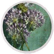 Allium Wildflower With Grunge Textures Round Beach Towel