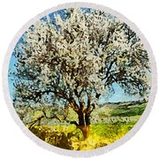 Almond Tree Round Beach Towel