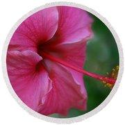 Aloha Aloalo Ulu Wehi Pink Tropical Hibiscus Wilipohaku Hawaii Round Beach Towel