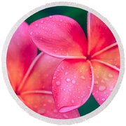 Aloha Hawaii Kalama O Nei Pink Tropical Plumeria Round Beach Towel