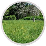 Alone In A Field Of Buttercups Round Beach Towel