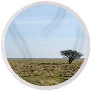 Alone Tree At A Coastal Grassland Round Beach Towel