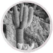 Alpaca Incahuasi Island Black And White Select Focus Round Beach Towel