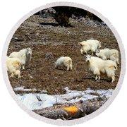 Alpine Mountain Goats Round Beach Towel