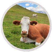 Alpine Pasture With Cow Round Beach Towel