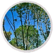 Alternate Reality - Reflected View Of The Forest From A Pond In Garland Ranch Park In Carmel Valley. Round Beach Towel