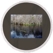 Reflections - On The - Silver River Round Beach Towel