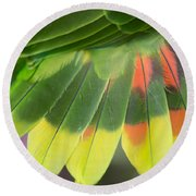 Amazon Parrots Feathers Abstract Round Beach Towel
