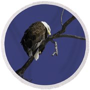 American Bald Eagle 1 Round Beach Towel