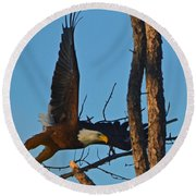 American Bald Eagle I Mlo Round Beach Towel