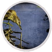 American Bittern With Brush Calligraphy Lingering Mind Round Beach Towel