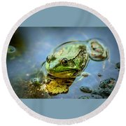 American Bull Frog Round Beach Towel