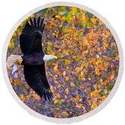 American Eagle In Autumn Round Beach Towel