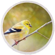 American Goldfinch - Digital Paint Round Beach Towel