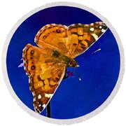 American Lady Butterfly Blue Square Round Beach Towel