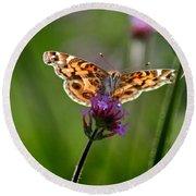 American Lady Butterfly In Garden Round Beach Towel