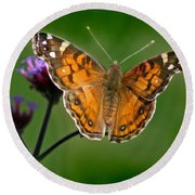 American Lady Butterfly With Green Background Round Beach Towel