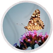 American Painted Lady Butterfly Blue Background Round Beach Towel