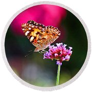 American Painted Lady Butterfly Pink Round Beach Towel