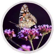 American Painted Lady Butterfly Purple Background Round Beach Towel