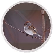American Tree Sparrow In A Winter Setting Round Beach Towel