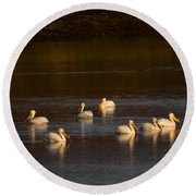 American White Pelicans Round Beach Towel