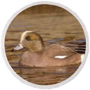 American Wigeon Round Beach Towel