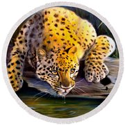 Amur Leopard  Spotted Something Round Beach Towel
