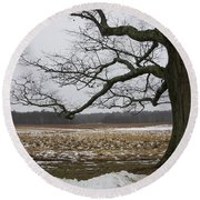 An Appleton Tree And Field In Winter Round Beach Towel