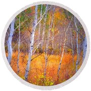 An Autumn Symphony Of Colour Round Beach Towel
