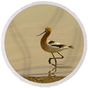 An Avocet Wading The Shore Round Beach Towel