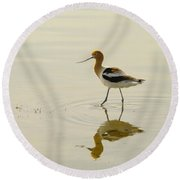 An Avocet Walking The Shore Round Beach Towel