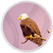 An Eagle Hanging Out Round Beach Towel