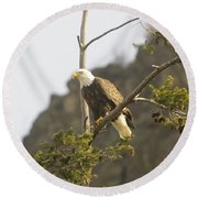 An Eagle In The Spring Round Beach Towel