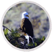 An Eagle In The Sun Round Beach Towel
