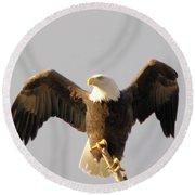 An Eagle Posing  Round Beach Towel