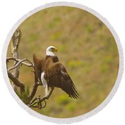 An Eagle Stretching Its Wings Round Beach Towel
