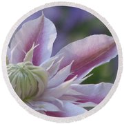 An Exotic Clematis Round Beach Towel
