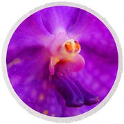 An Orchid's Delicates Round Beach Towel